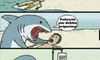 Ryklys - gelbėtojas