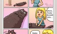 Minkštas katukas