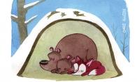 Žiemos miegas