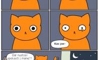 Apsėstas katukas