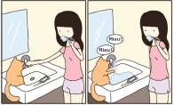Ištroškęs katukas
