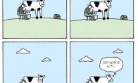 Nesuprasta karvė