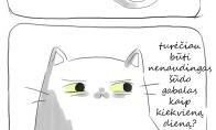 Vienintelė dilema kačių gyvenime