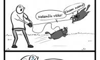 Pasivaikščiojimas su šunimi ir kate