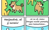 Ką mąsto šunys?