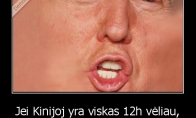 D. Trumpo logika