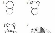 Kaip nupiešti pandą