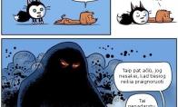 Pagalbininkas katukas