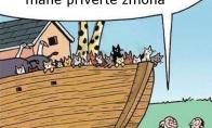 Vargšas Nojus