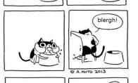 Kačių logika