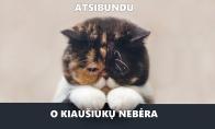 Depresovų katiniukų galerija