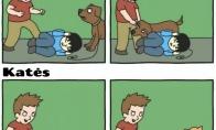 Skirtumas tarp kačių ir šunų