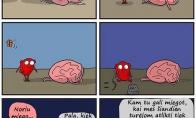 Mano smegenys dienos eigoje
