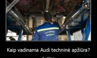 Audi techninė apžiūra