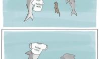 Ryklio maikutė