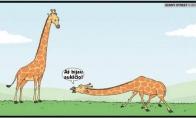 Blogiausia fobija, kokią gali turėti žirafa