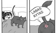 Bjaurus katukas