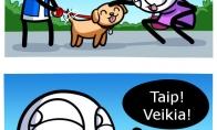 Mylimas šuo