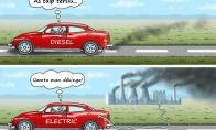Ekologiški žmonės