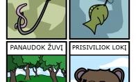Ką veikti gamtoje