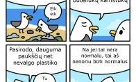 Paukščiai gurmanai