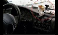 Kas reikalinga rimtam vairuotojui?