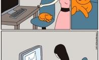 Darbas su kate