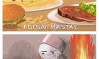 Maisto gaminimo pliusai ir minusai