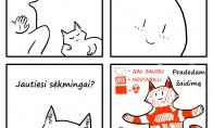 Katės glostymas