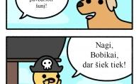 Pirato šuo