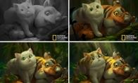 Animacijos, kurios buvo padarytos iš National Geographic kadrų [galerija]