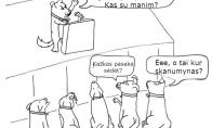 Šunų revoliucija