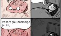 Smegenys nemiega