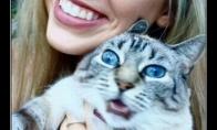 Katinų kankinimas