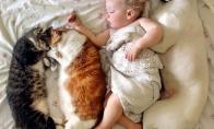 Gyvūnų gyvenimo akimirkos [30 foto]