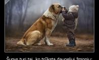 Žmonėms reikėtų pasimokyti iš šunų
