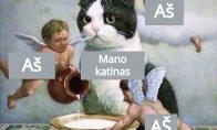 Katinas ir aš