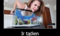 Nemo suaugo