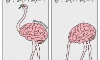 Ką veikia mano smegenys kai reikia suskaičiuoti