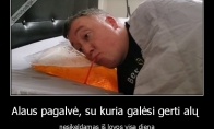 Alaus pagalvė