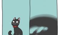 Kai bandai nufotografuoti savo katiną