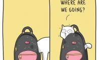 Kur keliaujam?