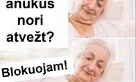 Anūkai pas močiutę