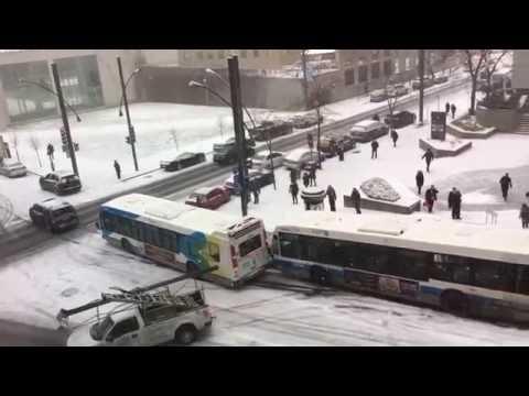 Pirmas sniegas Montrealyje