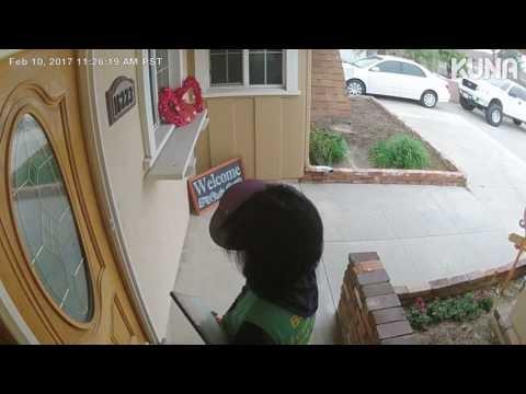 Nesvetingas šunelis