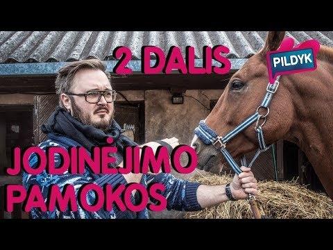 JODINĖJIMO PAMOKOS - 2 DALIS | Lauritta, sTimoMedia, Talžūnas, Vėjas | Pildyk ofisas