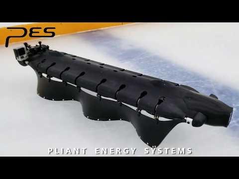 Robotas, galintis plaukti ir čiuožti ledu