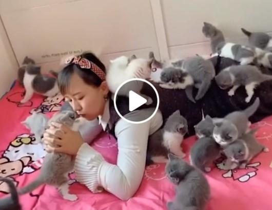 Moteris lovoje su daugybe kačių