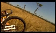 Antilopė užpuolė dviratininką