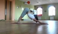 Katės joga